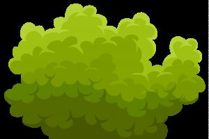 bush clipart 5-bush clipart 5-13