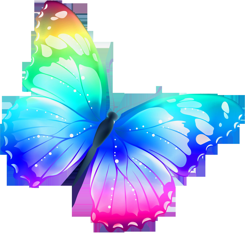 Butterflies clipart free clipartfox