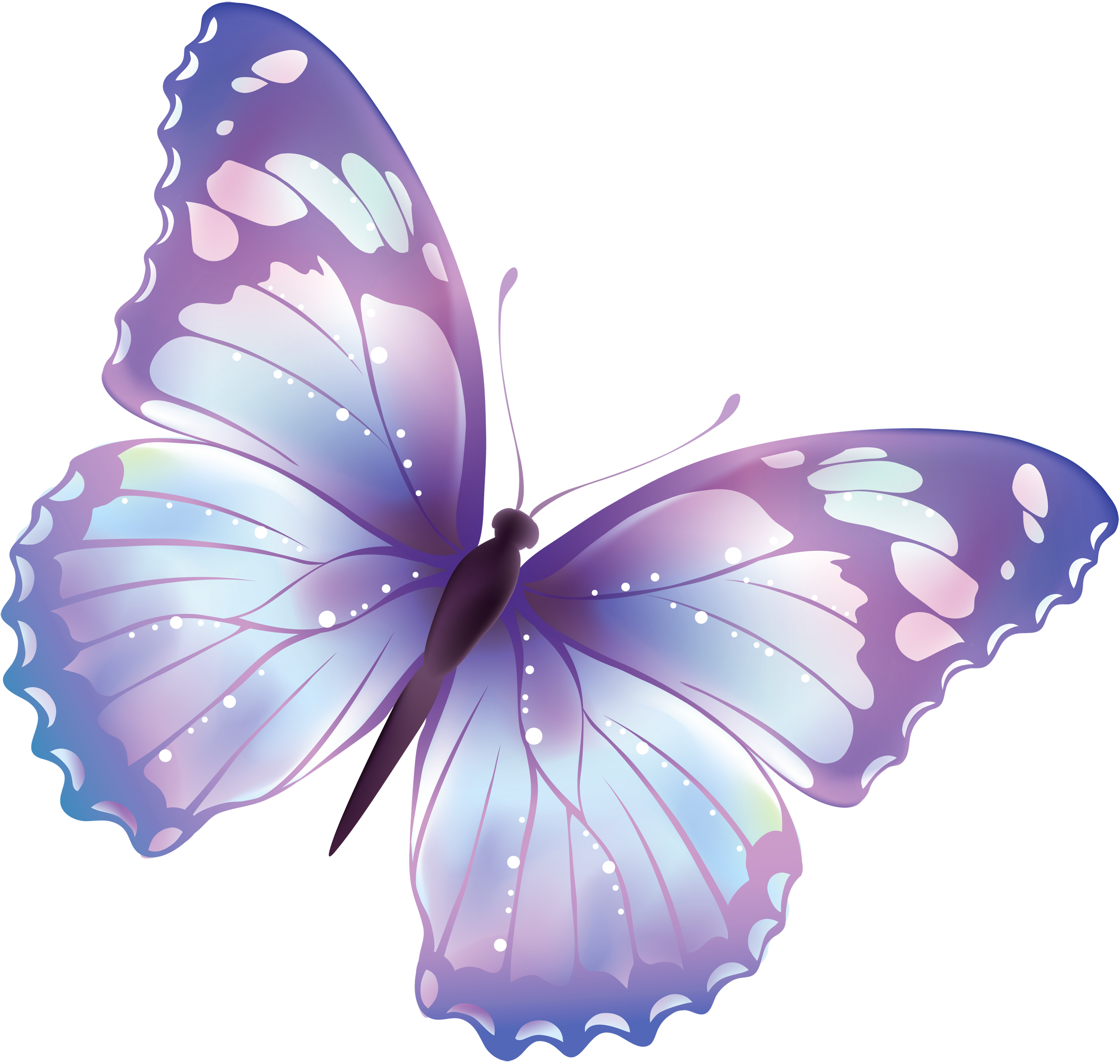 Butterflies, Google and Free .