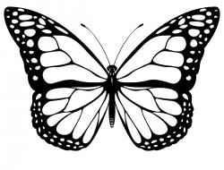 Butterfly Clipart Black And White-butterfly clipart black and white-4