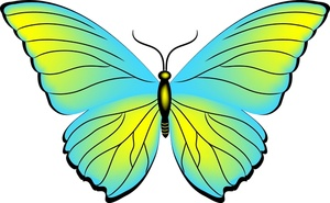 butterfly clipart-butterfly clipart-15