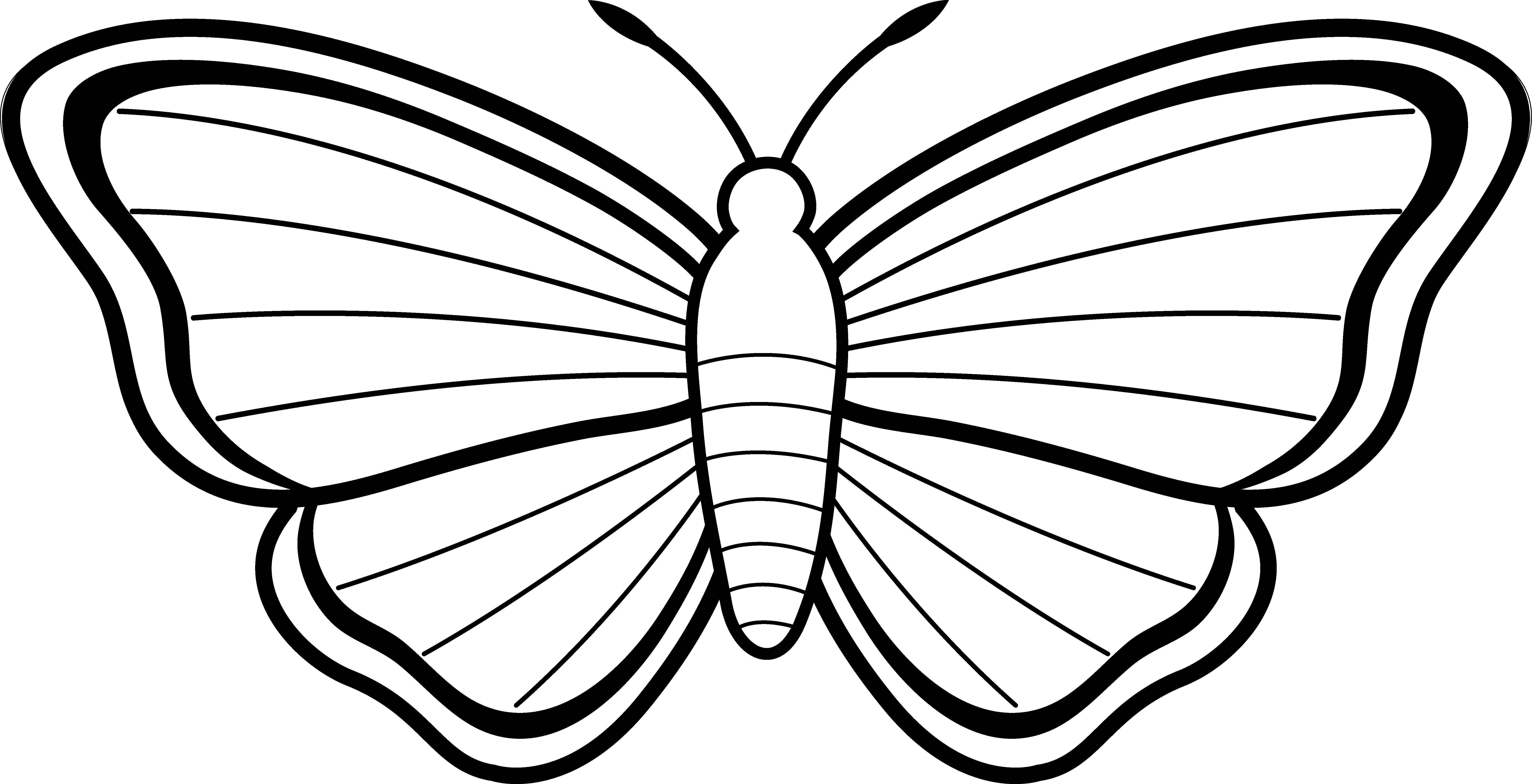 butterfly flying outline clipart
