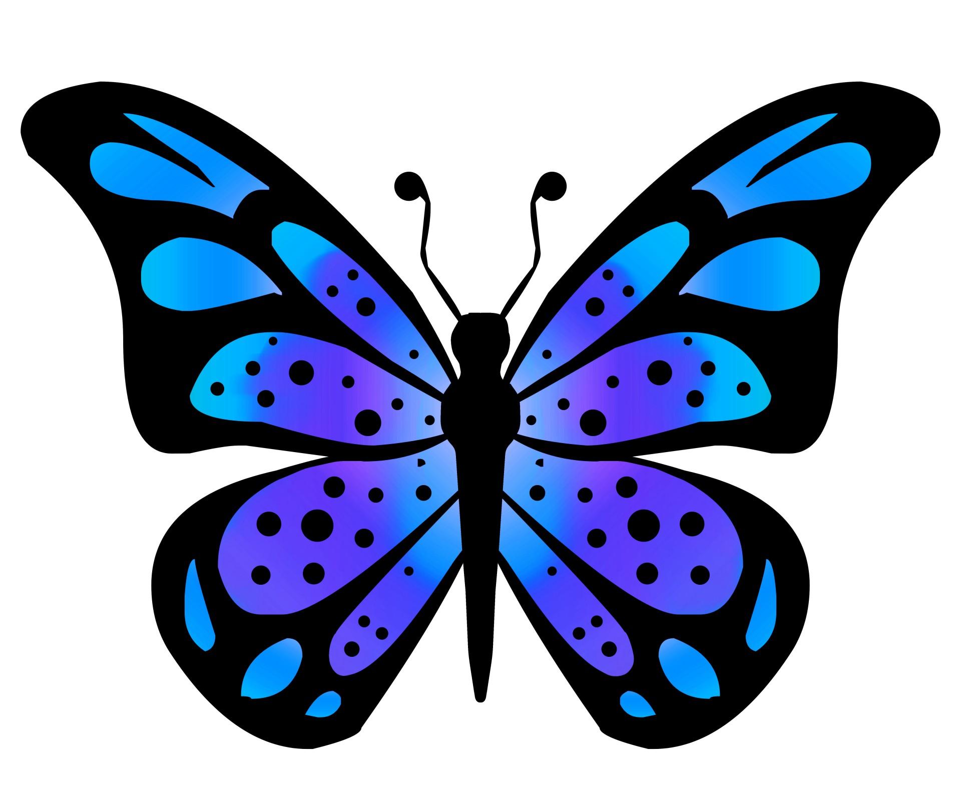 Butterfly art clipart .