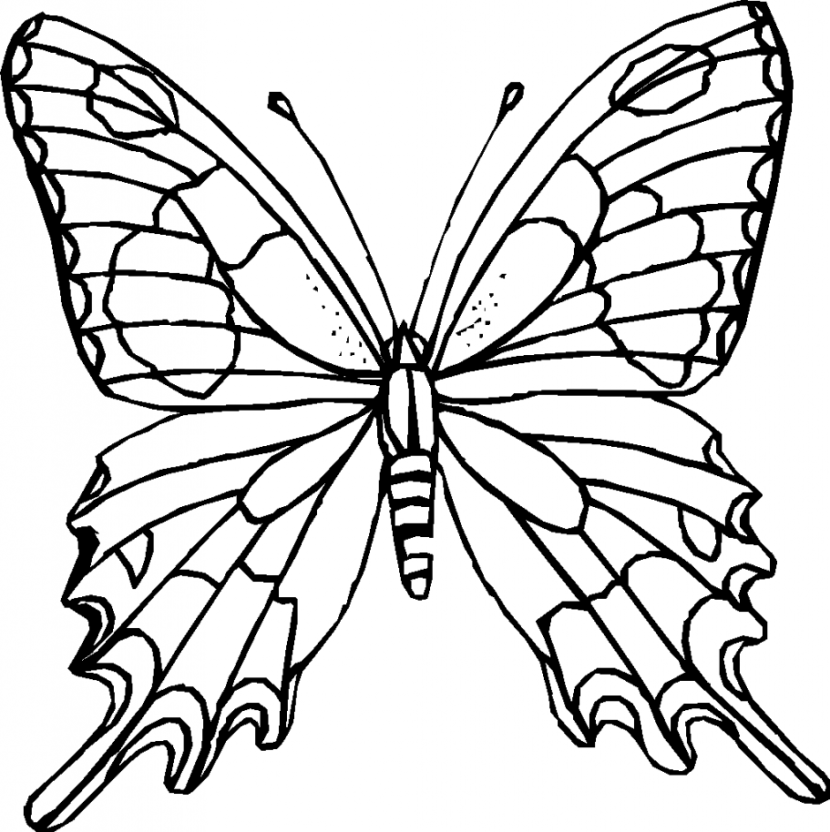Butterfly Black And White Butterfly Clip-Butterfly black and white butterfly clipart black and white 4-4