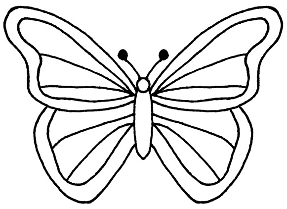 Butterfly black and white .