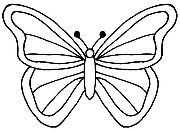 Butterfly Black And White .-Butterfly black and white .-8