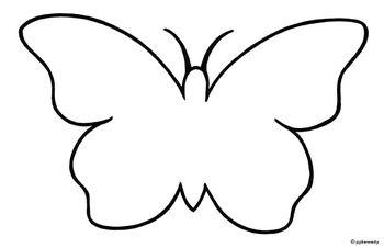 Butterfly: Black White .-Butterfly: Black White .-7