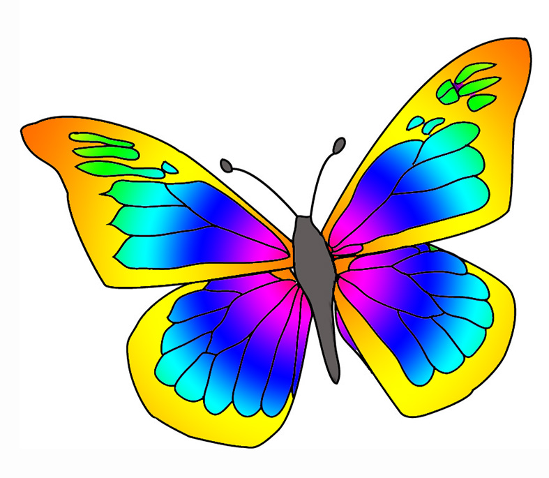 Butterfly clip art at vector .