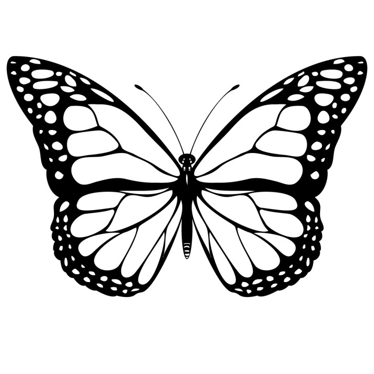 Butterfly Clip Art Black And White-Butterfly Clip Art Black And White-7