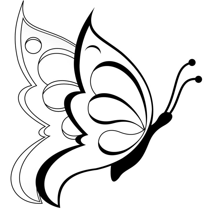 Butterfly Clipart Black And White #15173-Butterfly Clipart Black And White #15173-9