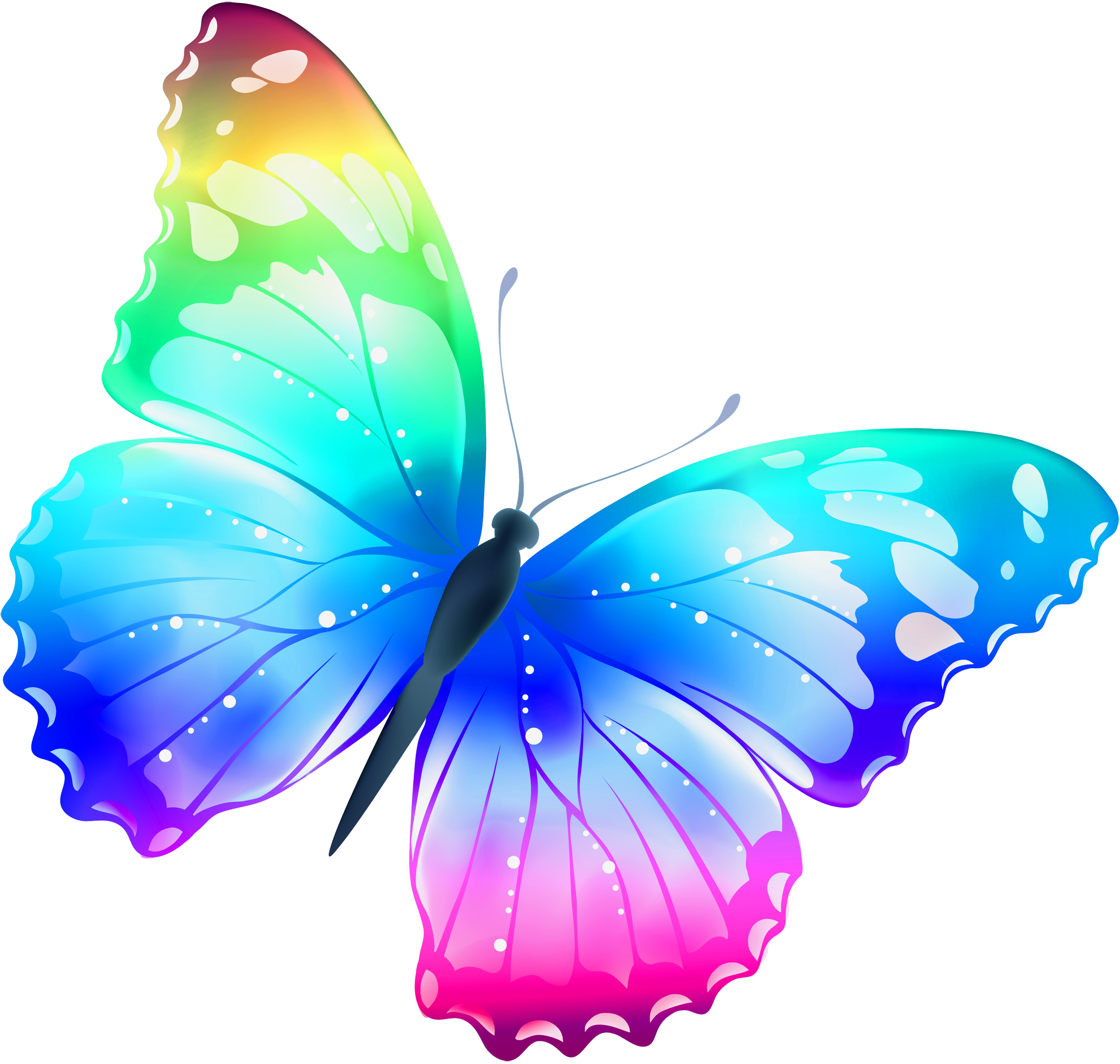 Free Pictures Of Butterflies - ClipArt Best