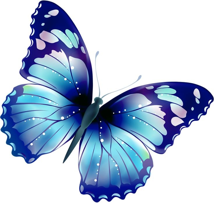 Butterfly Clipart Png - Free Butterfly Clipart