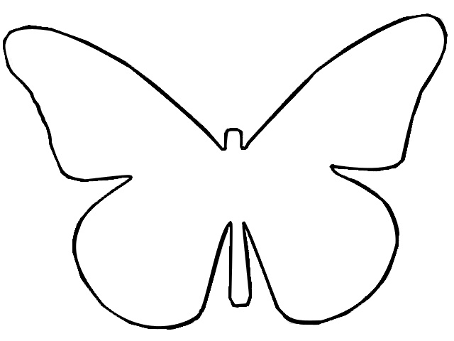 Butterfly Outline Butterflies And On-Butterfly outline butterflies and on-4