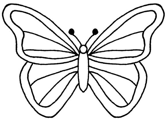 Butterfly Outline Template Free Coloring-Butterfly Outline Template Free Coloring Pages Templates-10