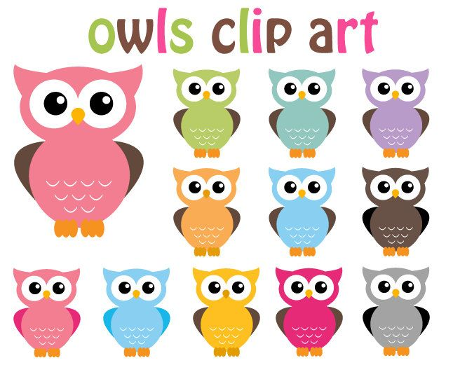 BUY 2 GET 2 FREE - Owl Clip Art Clipart -BUY 2 GET 2 FREE - Owl Clip Art Clipart - 12 Digital Elements - Personal-1