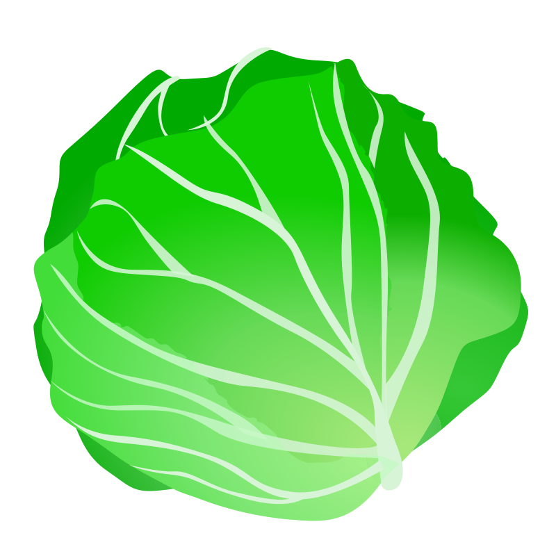 Cabbage Clipart-cabbage Clipart-2