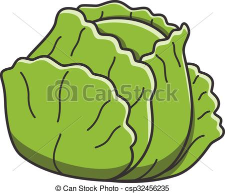 cabbage - csp7440831