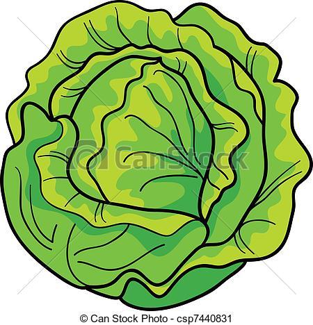cabbage - csp7440831