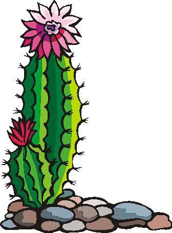 Cactus Clip Art - Bing Imágenes