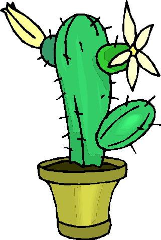 Cactus Clip Art-Cactus clip art-6