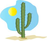 cactus in pot. Size: 40 Kb
