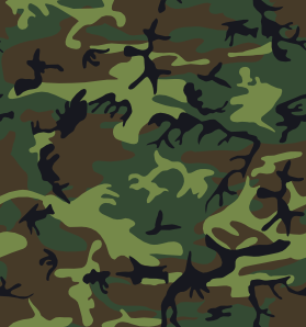 Camouflage Pattern Clip Art