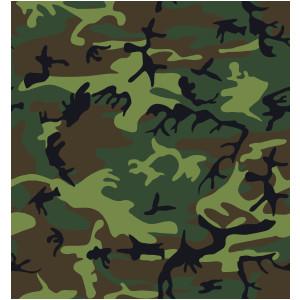 Camouflage Pattern clip art .