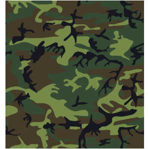 Camouflage Pattern clip art .