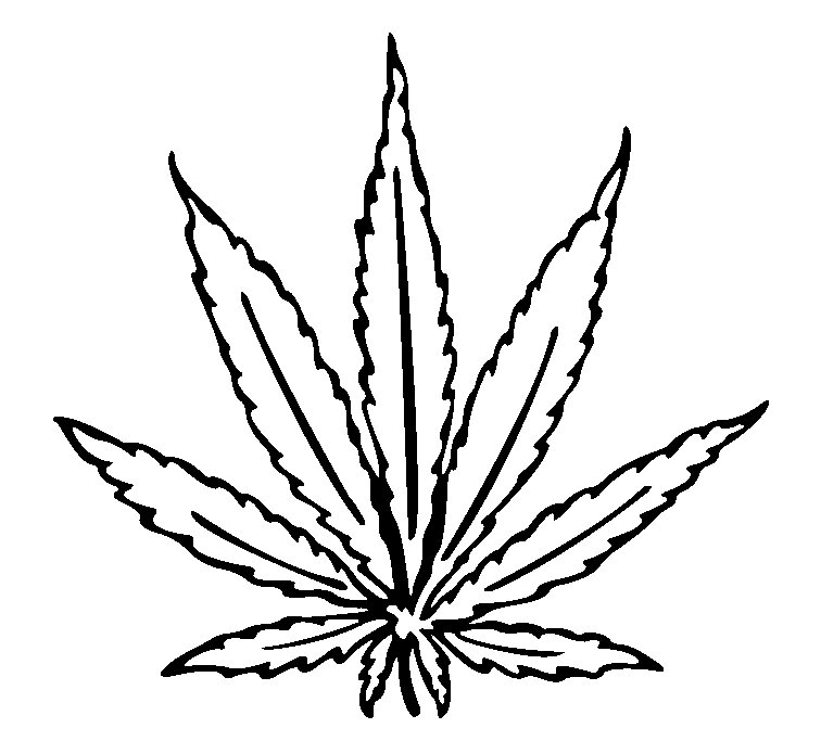 Cannabis Leaf Drawing I Free Images At Clker Com Vector Clip Art