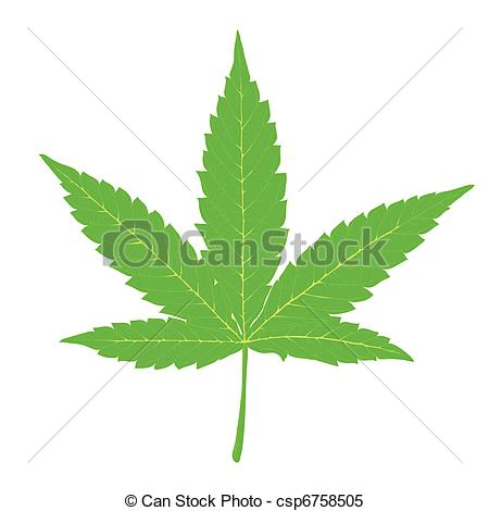 ... Cannabis leaf. Fully editable by layers, vector (eps8).