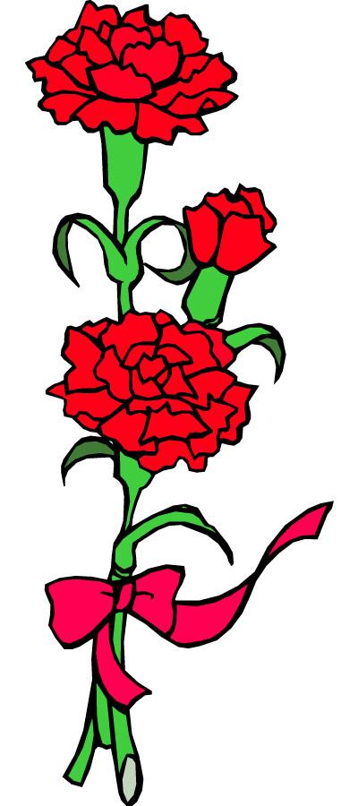 Carnation cliparts. Carnation 20flower 20clip 20art
