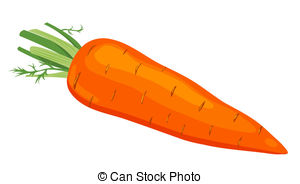 The Carrot. Vector Illustration. Isolate-The carrot. Vector illustration. Isolated on white.-19