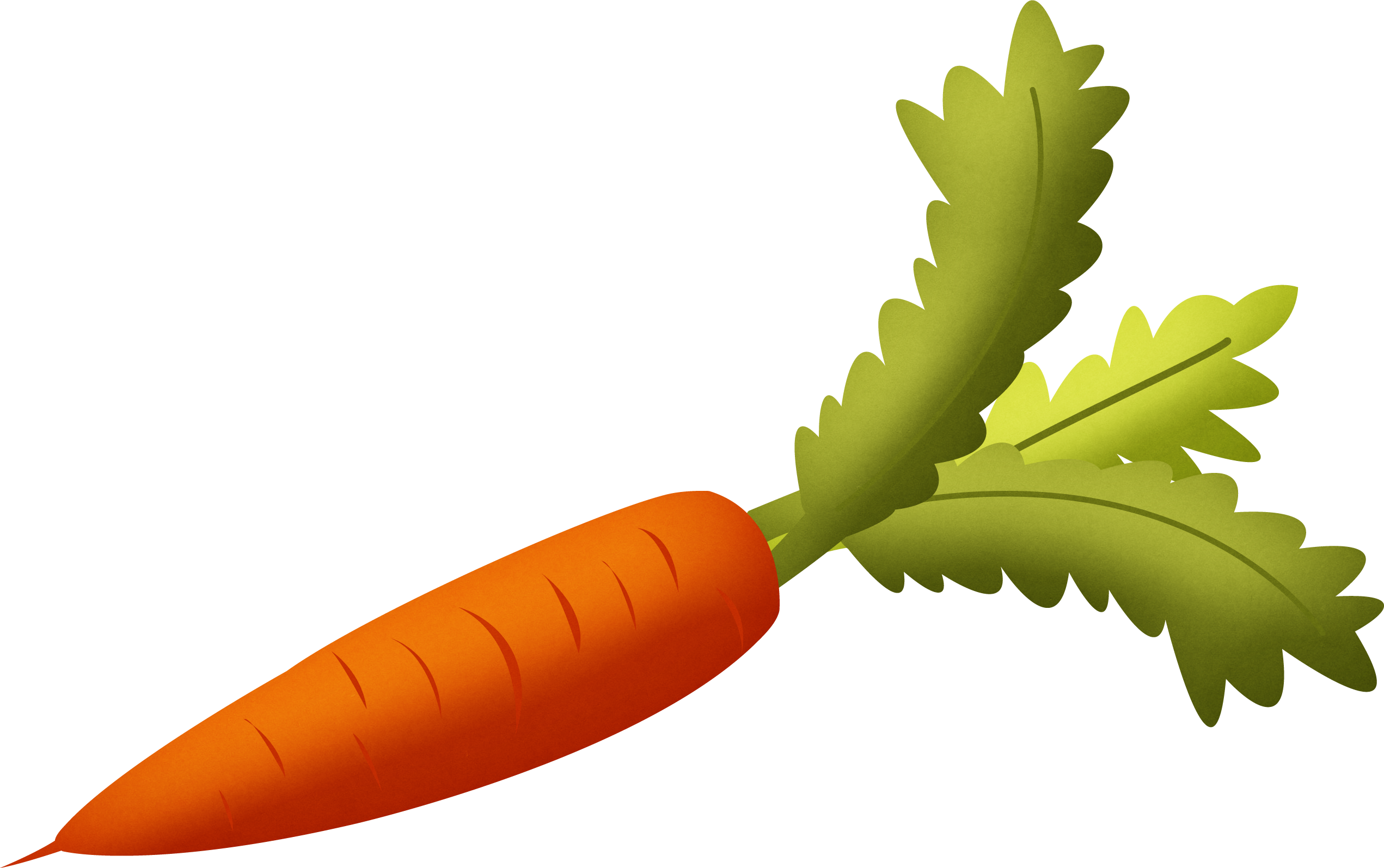 Carrot PNG Image-Carrot PNG image-9