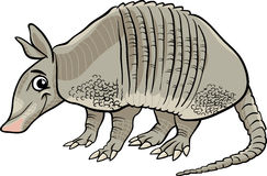 Cartoon Armadillo Animal Stock Photos Images Pictures 93