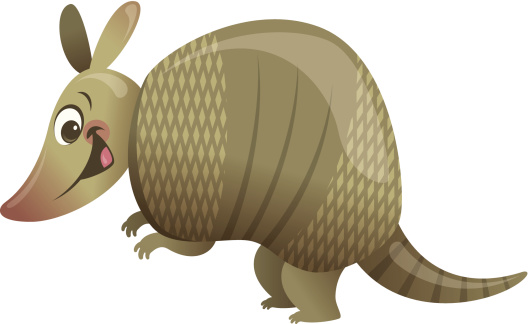 Cartoon Armadillo Animal Vector Clipart