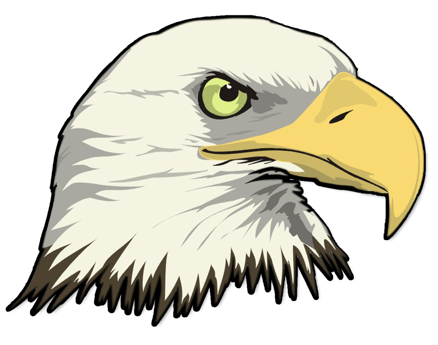 Cartoon Bald Eagle Head .