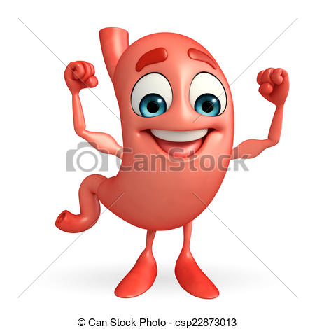 Cartoon Character of stomach with bodybu-Cartoon Character of stomach with bodybuilding - csp22873013-19