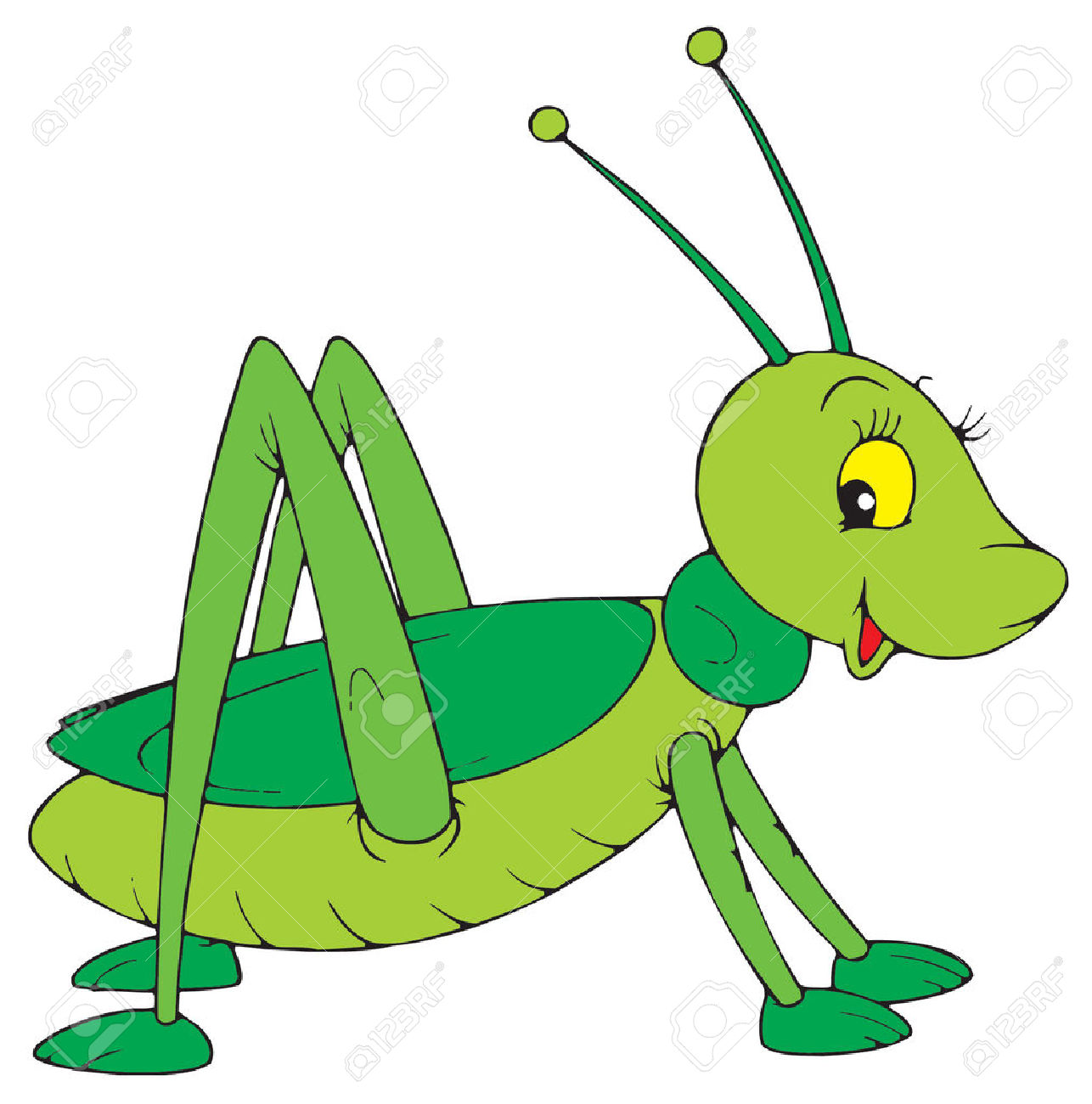 Cartoon Cricket Insect Clipart
