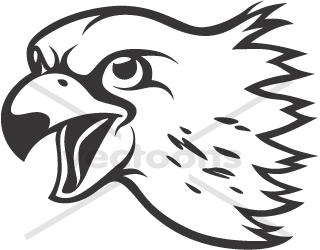 Cartoon Falcon Head Clipart