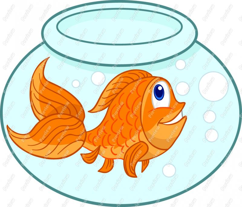 Cartoon Goldfish Clip Art Gold Fish Clip-Cartoon Goldfish Clip Art Gold Fish Clipart-4