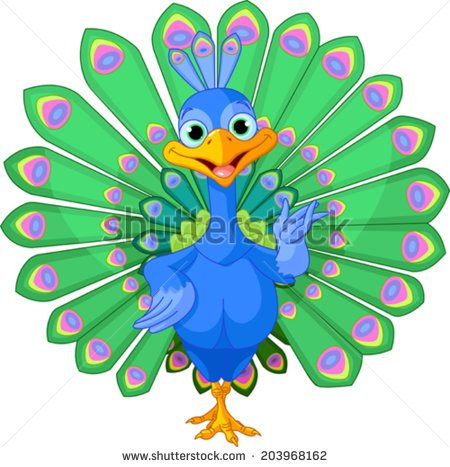 Cartoon peacock bird with beautiful tail-Cartoon peacock bird with beautiful tail.-14
