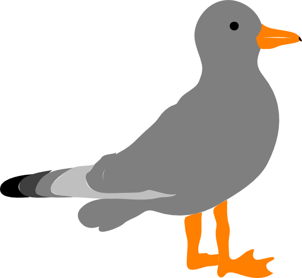 Cartoon picture of seagull clipart