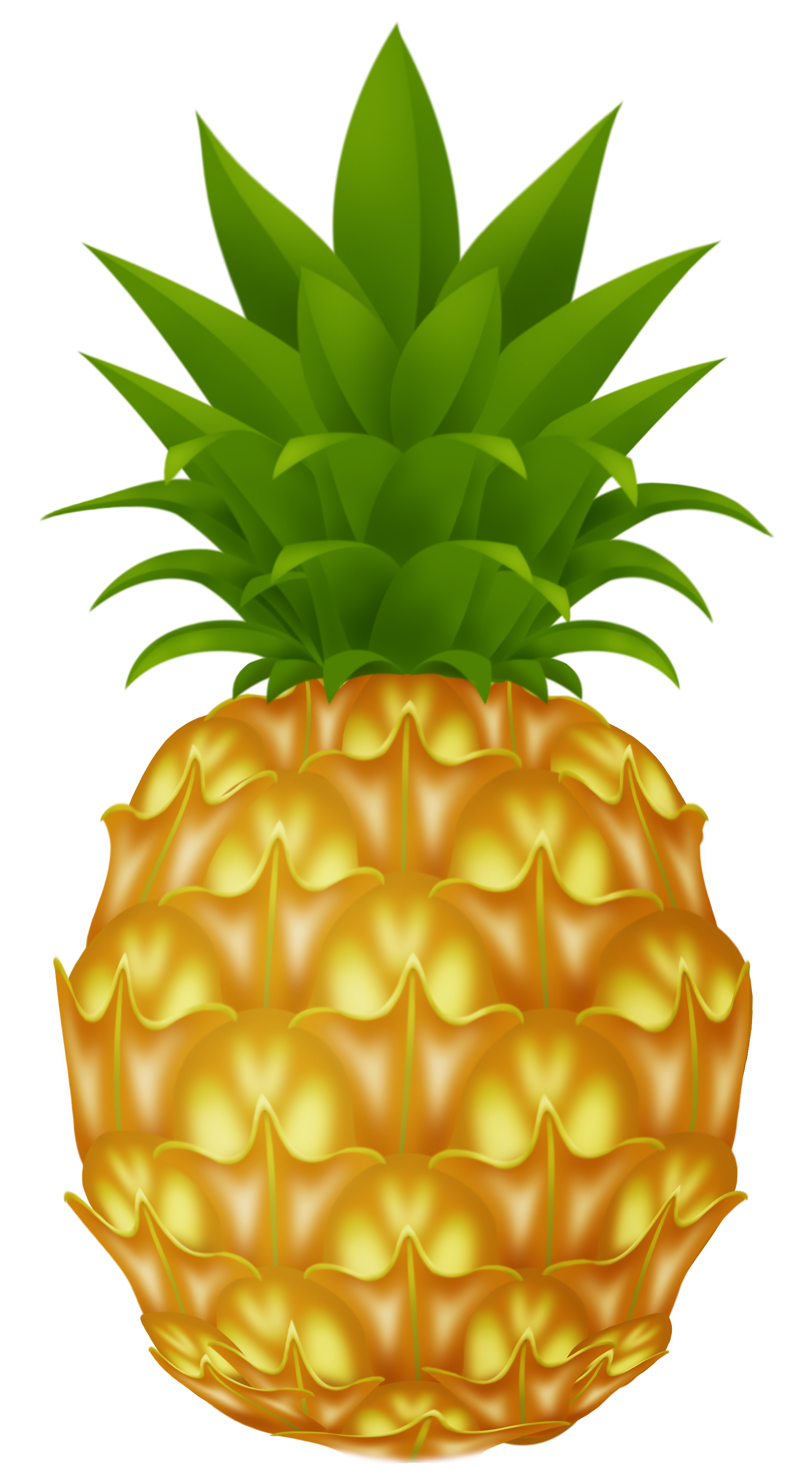 Cartoon Pineapple Clipart Best