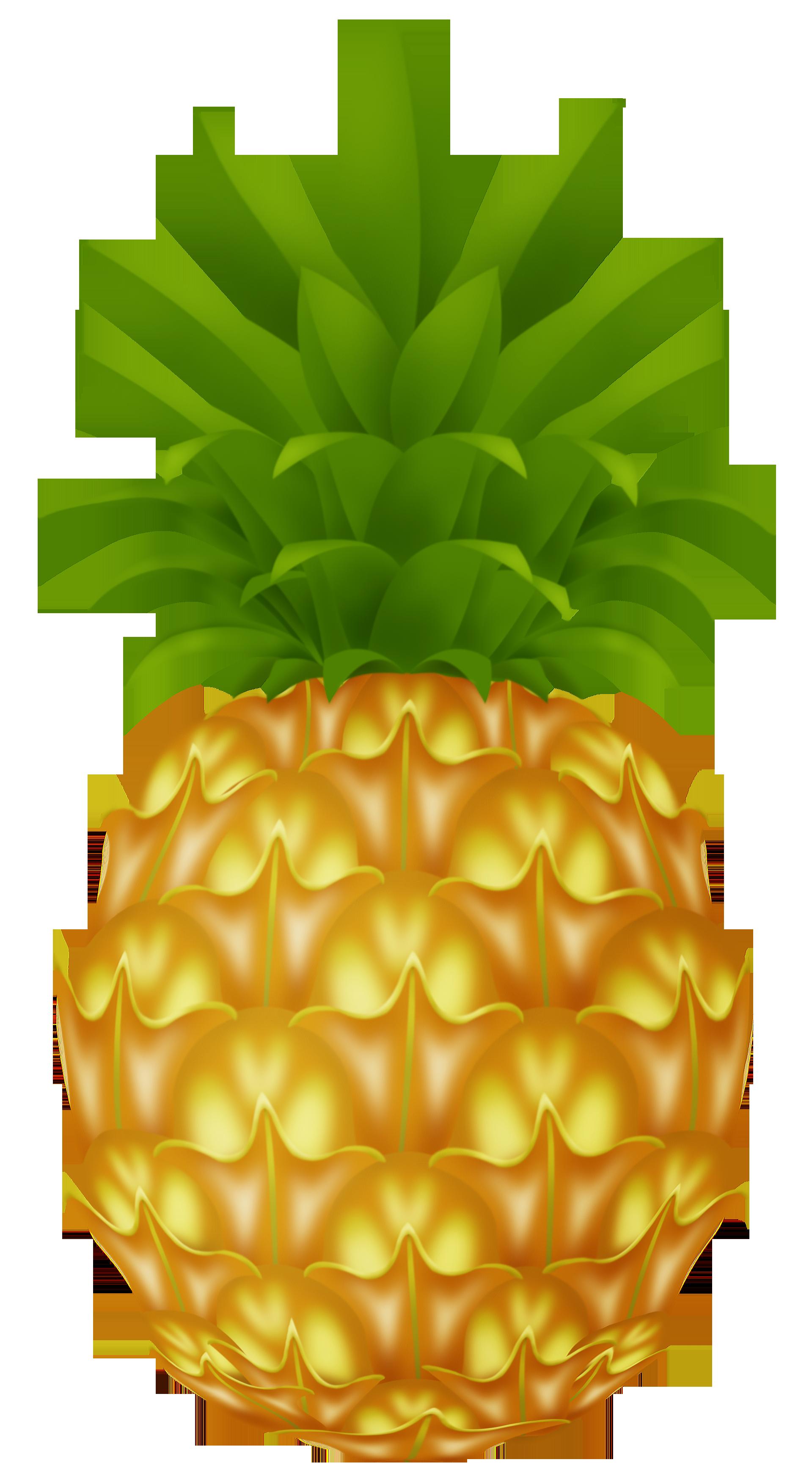 Cartoon Pineapple Clipart Best-Cartoon Pineapple Clipart Best-19