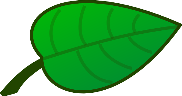 Cartoon Rainforest Leaf .-Cartoon Rainforest Leaf .-1