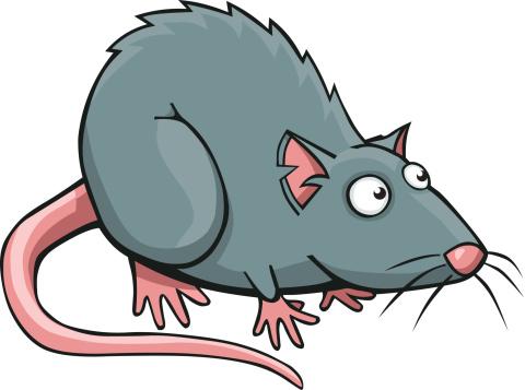 Cartoon Rat Vector Art Illustration-Cartoon Rat vector art illustration-15