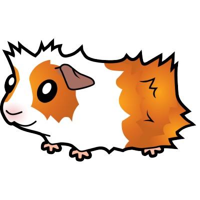 Cartoonies On Pinterest Cartoon Guinea Pigs And Cute Cartoon u0026middot; 8 Guinea Pig Clipart ...