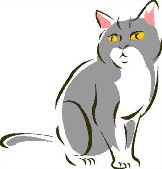 cat-1-sitting