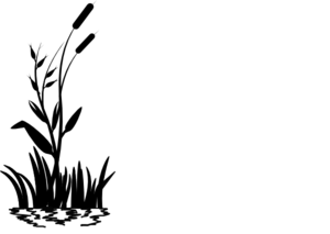Cattail Clipart