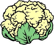 cauliflower clipart 7